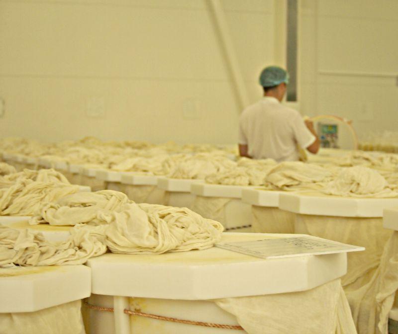 výměna látek ve formě na sýr