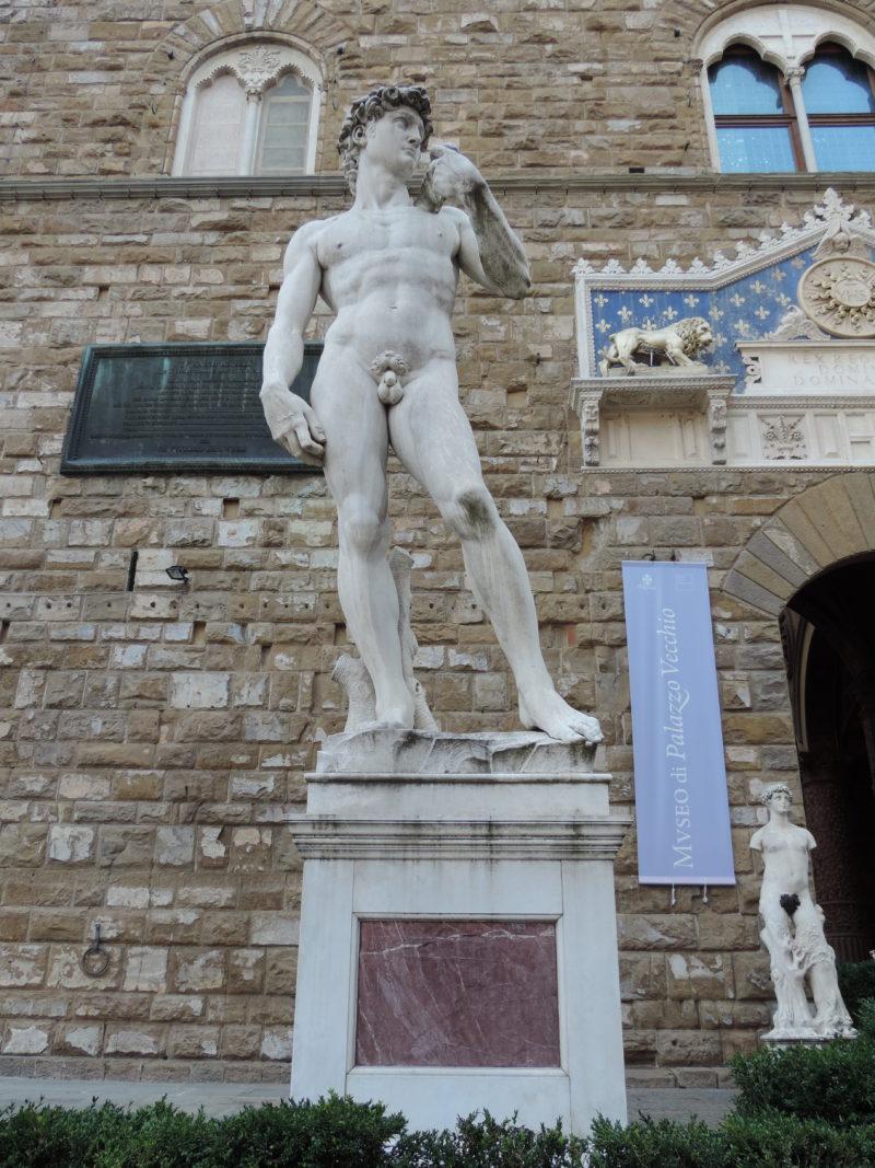 florencie socha davida