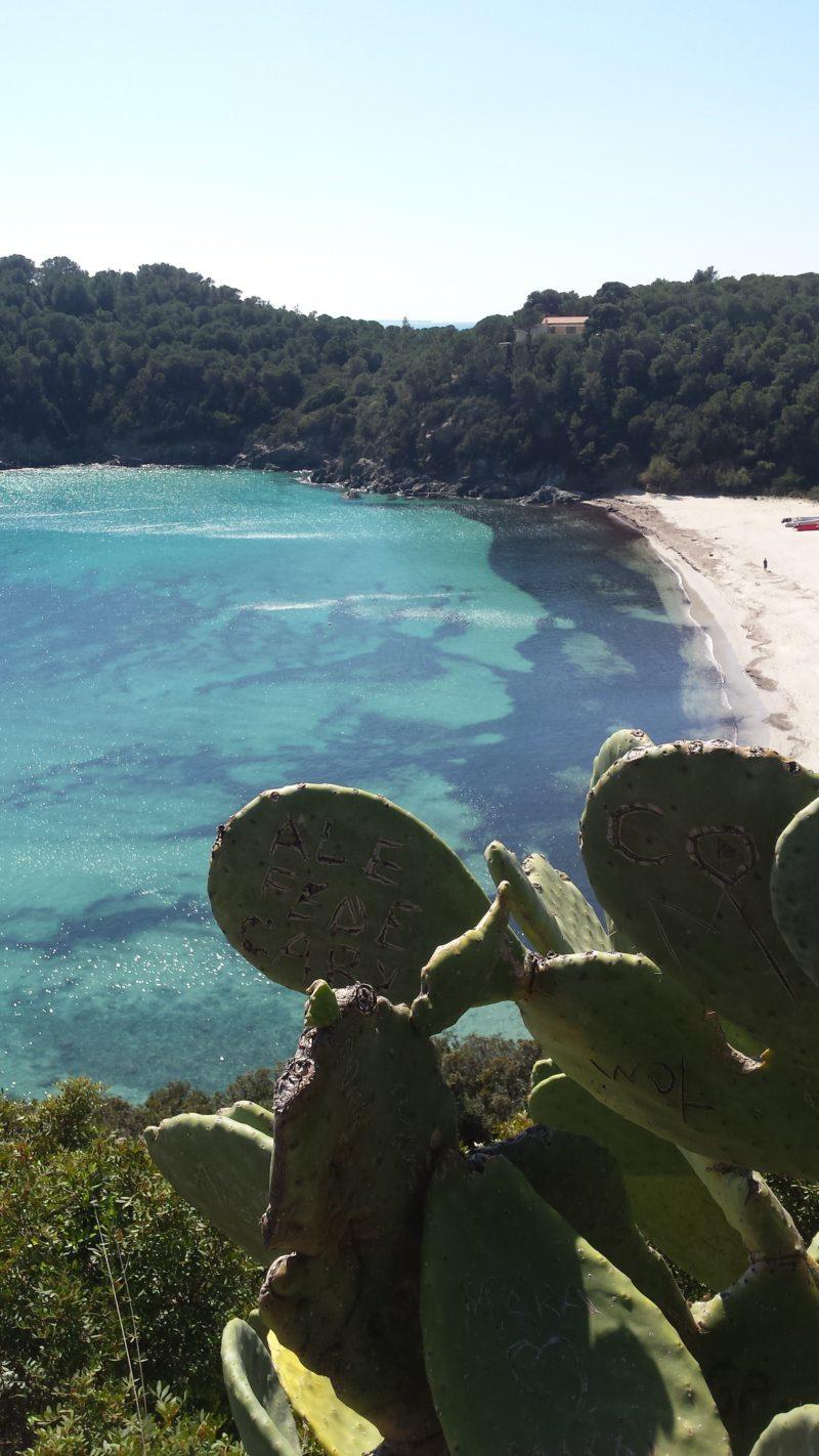 pobřeží na ostrově Elba