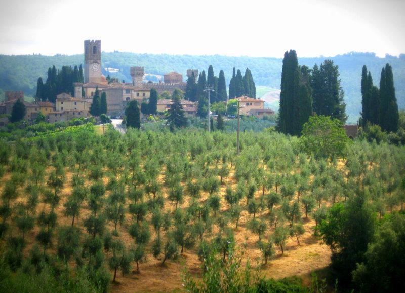 vinice Chianti Classico